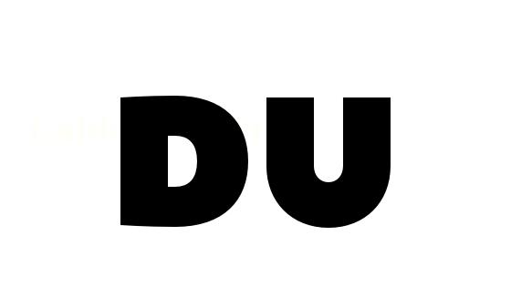 Duzen