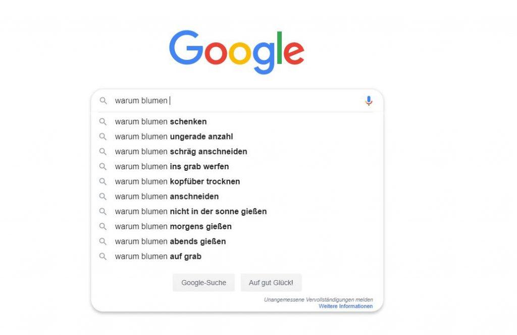 Google-Suche für FAQ